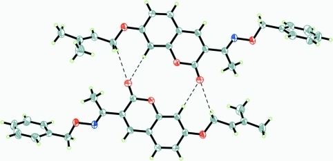 Part of the crystal structure of the title compound showing weak C—H···O hydrogen bonds as dashed lines.