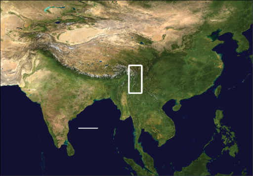 Map of Asia with study region outlined; scale line = 500 km. Modified from Wikimedia Commons, World Atlas of the World, at URL: http://upload.wikimedia.org/wikipedia/commons/8/8f/Whole_world_-_land_and_oceans_12000.jpg