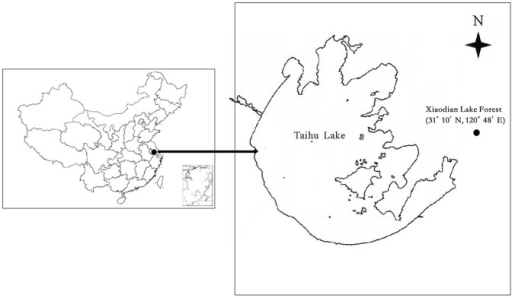 The map of study site in Xiaodian Lake area of the Taihu Lake basin China.