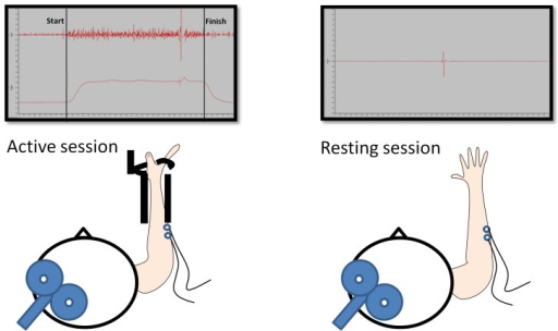 Testing setup.In the active sessions (left), subjects c | Open-i