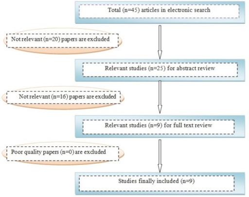 Results of the systematic literature search