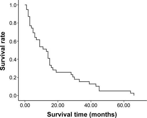 Overall survival curves of each treatment modality for patients with NSCLC.Note: Median survival time was extended to 13 months in PVP combined with IMRT.Abbreviations: IMRT, intensity-modulated radiotherapy; NSCLC, non-small-cell lung cancer; PVP, percutaneous vertebroplasty.