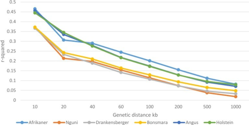 Decay of LD by distance across the studied breeds.