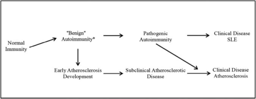 Evolution of benign autoimmunity and early atherosclerosis to clinical disease. SLE, systemic lupus erythematosus.