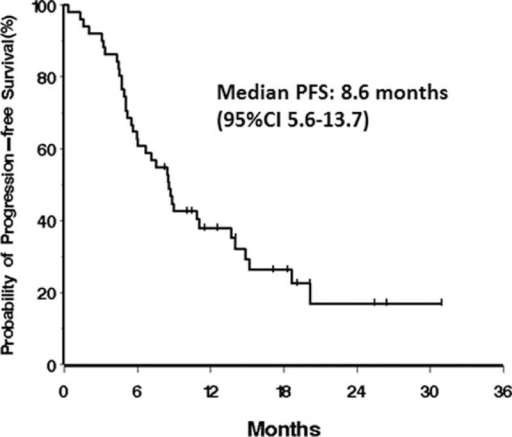 Kaplan–Meier curves for progression-free survival of 47 advanced gastric cancer patients.