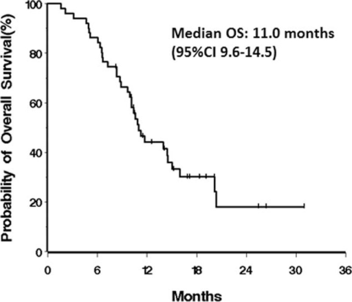 Kaplan–Meier curves for overall survival of 47 advanced gastric cancer patients.