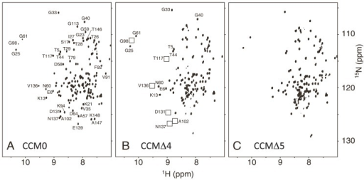 1H-15N HSQC of uniformly 15N-labeled CaM and its variants in the absence of Ca2+. The NMR spectra for CCM0 (A), CCMΔ4 (B), and CCMΔ5 (C) were recorded at a 1H frequency of 750 MHz. For clarity, only selected residues are labeled with their residue name and number. The positions of the peaks that are absent in panel (B) have been labeled using boxes.