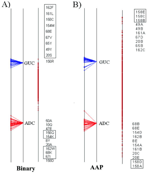 Axis 1 of the Between Group Analysis for the Nucleotidyl cyclases test case. Details as Figure 4