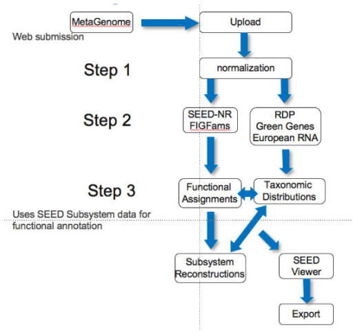 Overview of the workflow implemented in the metagenomics RAST pipeline. Three distinct stages of processing are executed, each adding data to a single directory, and ultimately enabling web-based browsing of results.