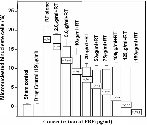 Influence of various concentrations of FRE on micronucleus induction in Chinese hamster lung fibroblast cells (V79) administered 1 h before 2 Gy γ-irradiation. *P < 0.001 compared to Untreated; **P < 0.001 compared to Drug control (150 μg/ml); †P < 0.001 compared to Radiation treated (RT) alone; ††P < 0.05 compared to RT alone.
