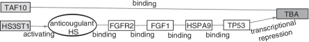 Pathways for the fourth ranked gene pair.