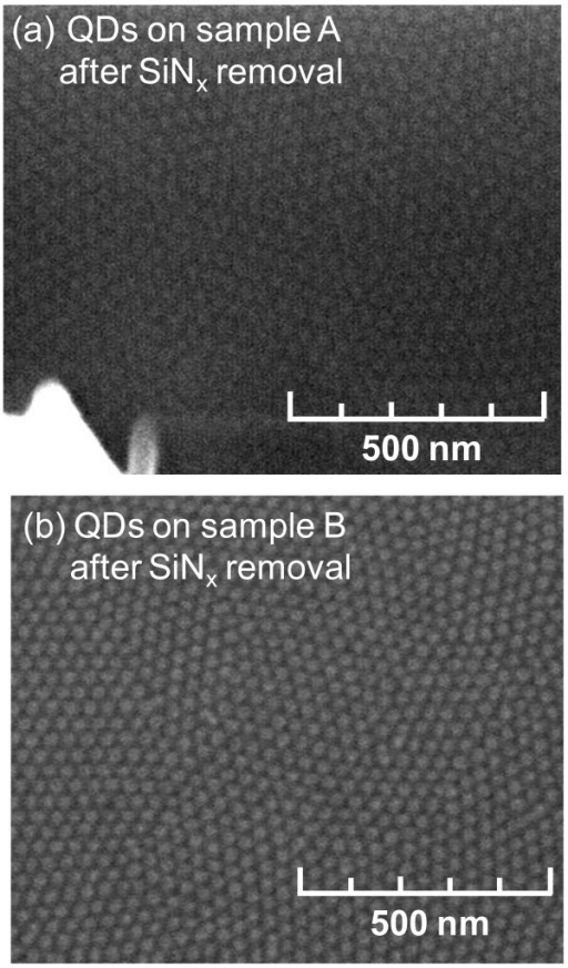 SEM images of SAE-grown InGaN/GaN QDs after removal of SiNx layer for both samples investigated: (a) sample A; (b) sample B.