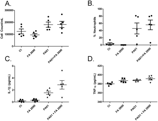 CFA (10 µg/mL) in the presence of PA01 does not significantly increase neutrophil recruitment or cytokine production in BAL.Panel A. When C57/Bl6 mice were exposed to 10 µg/mL CFA in the presence and absence of PA01 (4.5 106 PA01/mouse), total BAL cell count was not significantly different between Ct and PA01 but there was an increase in neutrophil percentage in the presence of PA01. However, there were no significant cell count differences between PA01 and PA01 with FA2690. Panel B. Although neutrophil recruitment in mice BAL was higher, there was no statistically significant difference between control and PA01 nor PA01 and PA01 with FA2690. Panel C. IL-1β in the presence of PA01 and CFA increased production more than PA01 alone but was not significantly different. Panel D. TNF-α in the presence of PA01 and CFA does not significantly increase compared with PA01 alone. N = 5.