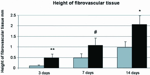Morphometric analysis of fibrovascular tissue thickness. Grey bar = fibrin; black bar = fibrin + EPC. *P < 0.05 versus Fibrin at day 14; #P < 0.05 versus Fibrin at day 7; **P < 0.05 versus Fibrin at day 3. N= 6 constructs per group and time-point.
