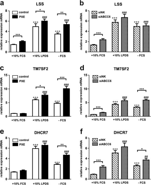 Gene expression analysis of cholesterol biosynthesis II