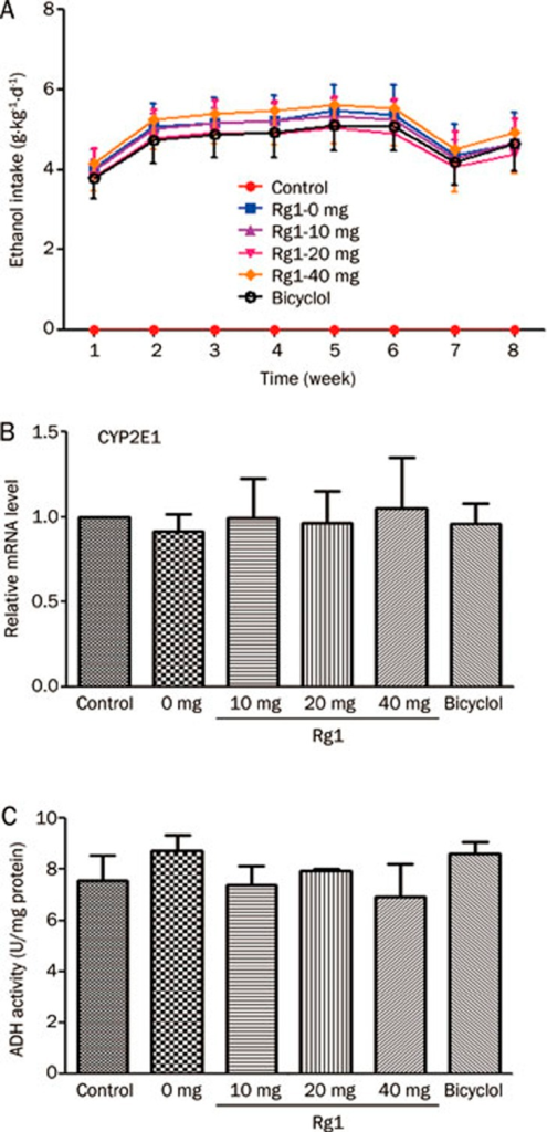 Effects of Rg1 on the hepatic CYP2E1 mRNA levels and ADH activity in rats with ethanol exposure. Rats were treated with 6% (v/v) alcohol water for 8 weeks, and Rg1 and Bicyclol were administrated at the last two weeks (once a day). (A) The ethanol intake was record during the modeling period. (B) CYP2E1 mRNA levels were quantified with GAPDH as an internal control. Quantitative analysis was taken three independent qPCR analyses. (C) ADH activity in rat liver with ethanol exposure. n=6. Data are presented as mean±SD.
