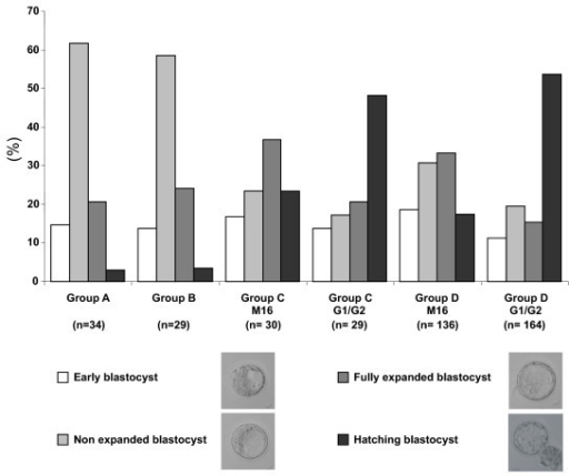 Blastocyst maturity. At day 4, each blastocyst was observed and classified into four different categories according to the maturity characteristics (size of embryonic cavity and degree of expansion). The results were expressed as a percentage of the total blastocyst number. In the same experimental group (C or D), significant differences of maturity degree were observed according to the culture medium (χ2 test, P < 0.05)