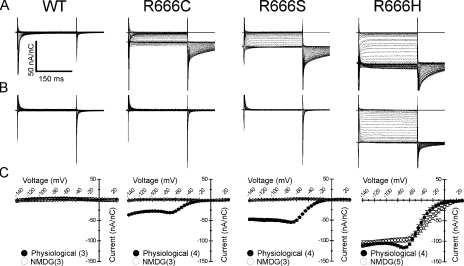Gating pore currents from other HypoPP mutations at site R666. Steady-state gating pore currents were recorded from R666S, -C, and -H mutant channels and compared with currents recorded in WT channels (denoted at top). Representative current traces, after leak correction and normalization to the corresponding maximal gating charge displacement, are shown for recordings made in bath and internal solutions approximating the normal mammalian physiological cation gradient (A) or in bath and internal solutions containing NMDG (B). Scale bars for all traces are shown in the inset to A. The mean I-V relationships of gating pore currents seen in each mutant under these conditions is shown in C. For each panel, the filled circles represent currents recorded in the physiological cation gradient, whereas open circles represent currents recorded when NMDG was present in both internal and external compartments. Number of samples recorded for each condition is denoted in parenthesis in the inset legend for each figure. Gating pore currents presumably carried by monovalent cations and abolished by NMDG substitution are seen in R666S and R666C mutant channels. In contrast, inward gating pore currents of similar magnitude are seen in R666H channels in both ionic conditions, consistent with the notion that the charge carriers of this gating pore current are protons rather than larger monovalent cations.