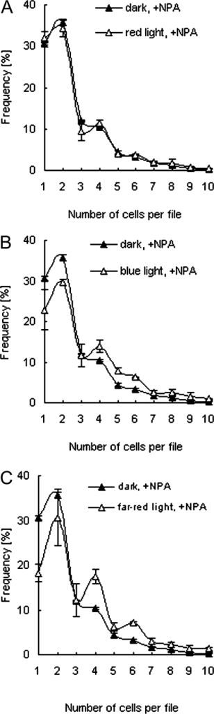 The light-dependent rescue of the division pattern in the presence of NPA depends on light quality. Frequency distributions of cell number per file were constructed for incubation with 5 μM NPA under equal fluence rates (26.0 μmol m−2 s−1) of continuous red (A), blue (B), or far-red light (C). Each distribution is based on ≥2000 cell files from two independent experimental series. Error bars indicate the SE.