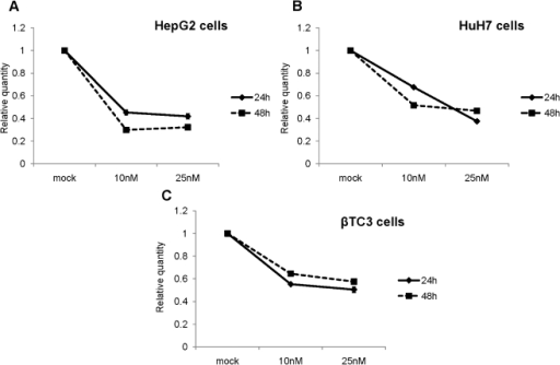 Intracellular reduction of targeted PCSK9 mRNA by LNA ASO.Two human hepatic cell lines: HepG2 and HuH7 and a mouse insulinoma β-TC3 cell line; were transfected with LNA ASO, at concentrations of 10 and 25 nM. Total RNA was extracted at two different time points- 24 h and 48 h post transfection and QPCR analysis was performed using specific primers. The levels of PCSK9 mRNA were normalized to S14 mRNA for (A) HepG2 and (B) HuH7 cells; and (C) with S16 mRNA for β-TC3 cells.