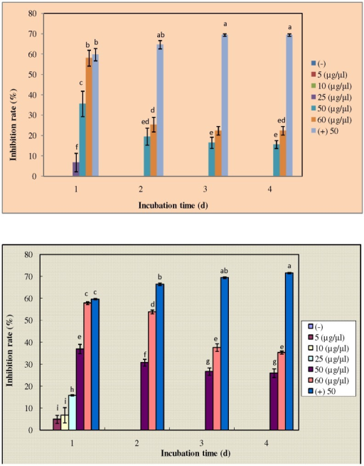 Antifungal activity of purified novel protein.The silkworm fecal matter extract was prepared in 0.02 M PBS and purified by the process of 40% ammonium sulphate precipitation, dialysis, gel-filtration chromatography and RP-HPLC. (A) The activity of purified novel protein at concentrations of 5, 10, 25, 50 and 60 µg/µl against F. solani strain (KACC 40384). (B) The activity of purified novel protein at concentrations of 5, 10, 25, 50 and 60 µg/µl against F. oxysporum strain (KACC 40032). Bars show IR% (mean of three replicates) ± standard error. Cycloheximide at a concentration of 50 µg/µl acted as positive control. The results were statistically analyzed by one-way Anova and Tukey's multiple range test at 95% confidence (P<0.05). Different subscripts present significant differences within and among groups.