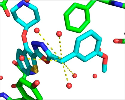 X-raycrystal structure of 20b (blue) bound to PvNMT (green).Further inspection of the water molecules within the active site showsthat the benzylic CH2 occupies a heavily solvated pocket,indicating that substitution may result in more favorable energeticswithin the enzyme active site. Dashed lines indicate water moleculeswithin 5 Å of the benzylic position.