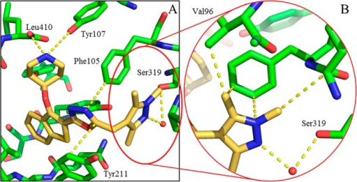 Binding mode of 34c (gold) bound to PvNMT.(A) 34c (gold) bound to PvNMT (green), showing piperidine–Leu410salt bridge interaction, deeply buried benzothiophene scaffold, and1,3,5-trimethylpyrazole heterocycle bound within the Ser319 hydrophobicpocket. (B) Enlarged view of the 1,3,5-trimethylpyrazole of 34c (gold) with PvNMT (green). This shows the water-bridgedinteraction between the pyrazole and Ser319, as well as multiple hydrophobiccontacts between the heterocycle and the binding pocket.