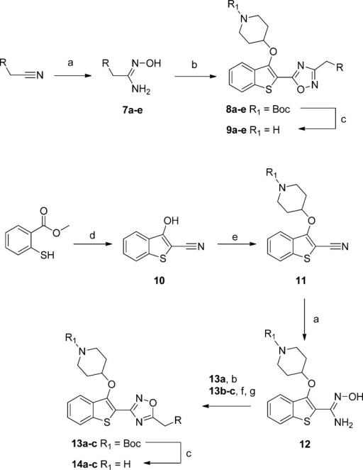 Synthesis of Two Regioisomers of 1,2,4-OxadiazoleBioisosteresReagents and conditions: (a) NH2OH·H2O, EtOH, rt, 5 h, 98–99%; (b) 2, 1-ethyl-3-(3-dimethylaminopropyl)carbodiimide, hydroxybenzotriazole,DMF, 140 °C, 3 h, 10–31%; (c) 10% TFA in DCM (v/v), rt,2 h, 13–99%; (d) bromoacetonitrile, t-BuOK,THF, 0 °C to rt, 15 min, 88%; (e) tert-butyl4-hydroxypiperidine-1-carboxylate, diisopropyl azodicarboxylate, PPh3, THF, rt 1.5 h, 78%; (f) RCH2CO2H,1-ethyl-3-(3-dimethylaminopropyl)carbodiimide, hydroxybenzotriazole,MeCN, rt, 18 h; (g) 4 Å molecular sieves, toluene, 18 h, 110°C, 54–68% over two steps.