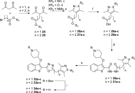 Synthesis of Five-MemberedHeterocyclic Methoxyphenyl ReplacementsReagentsand conditions: (a) NaH, ethyl bromoacetate, THF, 0 °C, 18 h,78%; (b) methyl 3-bromopropionate, K2CO3, DMF,55 °C, 18 h, 30%; (c) NH2NH2·H2O, MeOH, rt, 3 h, 83–99%; (d) n =1, NH2OH·HCl, K2CO3, EtOH, 78°C, 3 h, 12%; n = 2, NH2OH·HCl,H2O, MeOH, 60 °C, 18 h, 89%; (e) MeNHNH2, AcOH, 3 h, rt, 73–95%; (f) LiOH·H2O, MeOH,rt, 18 h, 51–95%; (g) 16, 1-ethyl-3-(3-dimethylaminopropyl)carbodiimidehydrochloride, hydroxybenzotriazole, THF, DMF, rt, 18 h, 48–99%;(h) TsCl, 1,2,2,6,6-pentamethylpiperidine, DCM, rt, 18 h; (i) 10%TFA in DCM (v/v), rt, 2 h, 3–26% over two steps.