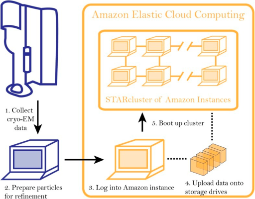 Workflow for analyzing cryo-EM data on Amazon's cloud computing infrastructure.After collecting cryo-EM data (Step 1), particles are extracted from the micrographs and prepared for further analysis (Step 2). After logging into an 'instance' (Step 3), data are uploaded to a storage server (elastic block storage) (Step 4). At this point, STARcluster can be configured to launch a cluster of 2–30 instances that is mounted with the data from the storage volume (Step 5). A detailed protocol can be found at an accompanying Google site: http://goo.gl/AIwZJz.DOI:http://dx.doi.org/10.7554/eLife.06664.003