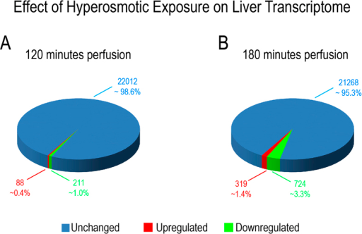 Overview on transcriptome changes in total RNA isolated from rat livers.Overview on transcriptome changes in total RNA isolated from rat livers perfused with normoosmotic (305 mosm/l) and hyperosmotic (385 mosm/l) medium for (A) 120 and (B) 180 minutes. RNAs isolated from 4 independent experiments for each time point were hybridized to Affymetrix arrays (rat Genechip v1.0) and data were analysed with AltAnalyze using a cut-off of 2-fold (significance level was set to p = 0.05; one-way ANOVA). After 120 minutes of hyperosmolarity 1.3% of the transcripts were significantly altered, while after 180 minutes of hyperosmolarity 4.7% of the transcripts were significantly altered. Upregulated genes are shown in red, downregulated genes are shown in green and unchanged genes are shown in blue.