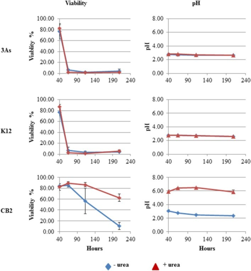 Effect of urea degradation on cell viability. Viability and pH were measured during the growth of the Thiomonas strains in m126 medium in the absence and presence of urea. Error bars indicate standard deviations based on triplicate cultures.