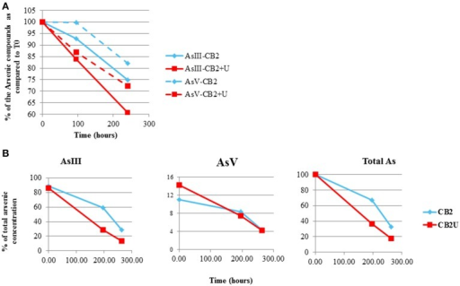 Arsenic concentration in AMD-impacted water inoculated with CB2 in the presence and absence of urea. As(III) and As(V) were measured by performing (A) GC-MS or (B) ICP-AES in duplicate. Arsenic concentrations are expressed as a percent of the total arsenic concentration measured at T0.