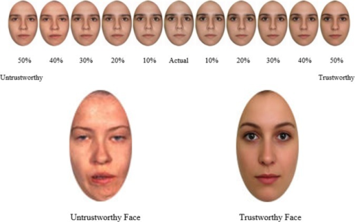 Example of the Faces and Morphs used in Study 2 (consent from the person depicted was obtained for publication of these images)