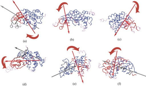 Domain movements of PKR in the protein protein complexes.Effective rotation axes and perpendicular centroid-connecting lines are rendered as tubes in the color of the corresponding domain. The arrows indicate a left-hand rotation, indicating a shift in the center of mass of the domain from the first structure to the second structure. The plots are indicated by (a) PKRpp-eIF2α, (b) PKRpp-K3L, (c) PKRpp-TAT, (d) PKRp-eIF2α, (e) PKRp-K3L, (f) PKRp-TAT. Reference domain, Domain 1 and Domain 2 are indicated by Blue, Red and Black respectively. The arrows drawn indicate the direction of the domain motion.