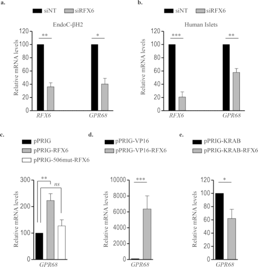 RFX6 regulates GPR68 expression in human β-cells.EndoC-βH2 cells (a) and adult human islets (b) were transfected with control non-target siRNA (siNT) or siRNA targeting RFX6 (siRFX6). GPR68 expression was analyzed 72 h post transfection by RT-qPCR. Data are expressed as percentage of siNT transfected cells. (c–e) wtRFX6 and Mut506RFX6 (one-way ANOVA) (c), transactivation domain VP16- conjugated RFX6 (d) and transcriptional repression domain KRAB- conjugated RFX6 (e) were expressed in EndoC-βH2 cells using bicistronic constructs with IRES-EGFP. GFP+ve cells were FACS isolated 48 h post-transfection and GPR68 expression was analyzed by RT-qPCR. Data are mean ± SEM of 3–5 experiments. *p < 0.05; **p < 0.01; ***p < 0.001 and ns, not significant.