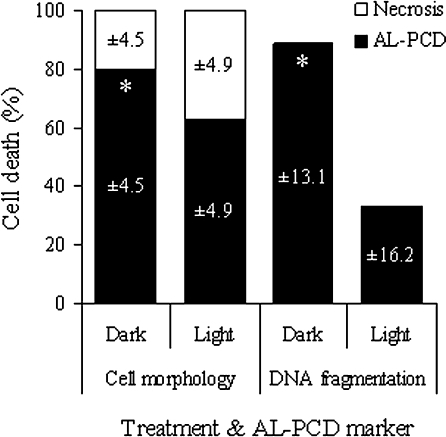 Light-grown and dark-grown culture cells react differently to an AL-PCD-inducing heat treatment. Percentage of AL-PCD, necrosis, and living cells, scored using both cell morphology and DNA fragmentation markers of AL-PCD, in A. thaliana dark-grown and light-grown cultures, 24 h after heat treatment. Values are means ±SD (n ≥3 replicates). PCD values marked with an asterisk were significantly different from PCD in light-grown cultures for the same PCD marker (P=0.006 for cell morphology marker and P=0.001 for DNA fragmentation marker).