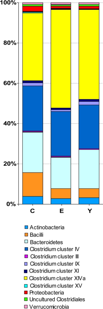 Relative contribution of the phylum/order-like phylogroups to the microbiota of centenarians, elderly and young adults.In the legend, phylum/order-like phylogroups which contribute for at least 0.5% to one of the profiles are indicated.
