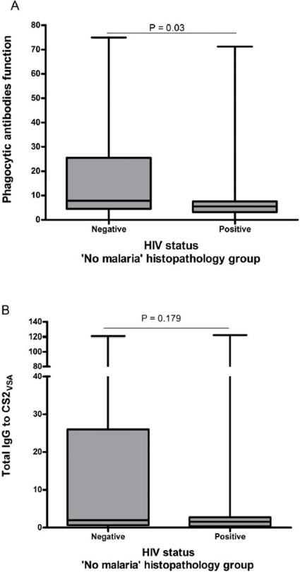 Effect of HIV on the anti-CS2VSA antibody levels in the 'No Malaria' histopathology group.In a univariate analysis of women that showed no evidence of either peripheral or placental malaria infection, using Mann-Whitney ranksum tests, phagocytic antibodies (A) are shown to be significantly decreased by HIV infection (z = −2.17, p = 0.03). On the contrary total IgG to CS2VSA (B) shows a non-significant decrease in the HIV-positive group (z = −1.35, p = 0.179. Box, median and interquartile range; whiskers, lowest and highest values. P values are shown.