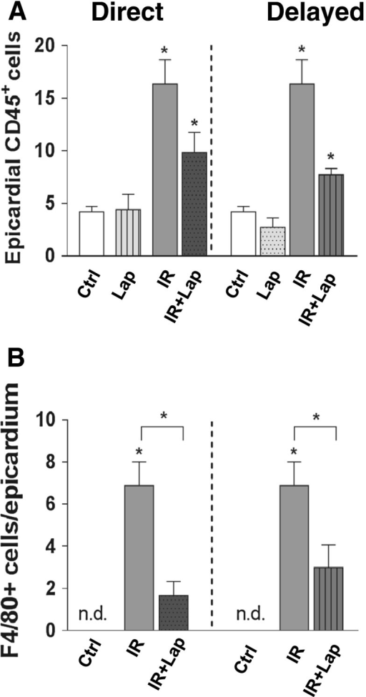 Inflammatory changes after ErbB2 inhibition alone or in combination with irradiation. a Quantification of CD45+cells b and of F4/80+cells per section in the epicardium. Each value represents the mean (±SEM) for minimal five mice per group. *p < 0.05 compared to age-matched untreated controls. n.d. not determined. Ctrl control; Lap lapatinib; IR irradiation; IR+lap irradiation combined with lapatinib