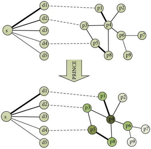 The approach for predicting the genes with respect to symptom using PRINCE algorithm. For a query symptom S, it has varying degrees of relationship with other diseases, denoted by d1–d5 (where the thickness of lines represents degree of correlation between symptom and diseases). p1–p9 comprise the protein set of a protein-protein interaction network, where interactions are denoted by lines with different thickness (confidence). PRINCE uses an iterative propagation method to assign a score of each protein. The protein with higher score is considered to be the causal gene candidate for symptom S.