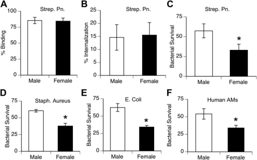 Female alveolar macrophages show better killing of ingested bacteria.Binding (A) and internalization (B) of S. pneumoniae in normal male and female AMs is similar. Female AMs kill more internalized bacteria than male AMs in assays using pneumococci (C) (n > 11, * = p < 0.01), S. aureus (D) or E. coli (E), (n > 3, * = p < 0.01). (F). Normal human female AMs also show greater killing of internalized pneumococci, (n > 5, * = p < 0.01).DOI:http://dx.doi.org/10.7554/eLife.03711.005