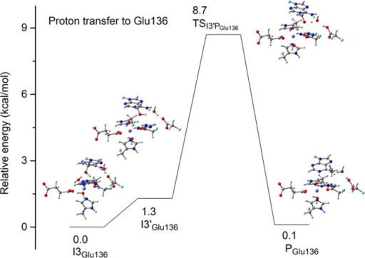 Relative energies (kcal/mol) for the structures alongthe minimumenergy path (MEP) for the proton transferred to Glu136 in the quintetstate for the H2O pathway. (Arg210, Glu136, and a bridgingwater were added to the QM subsystem for these structures). Carbonatoms are colored in gray, hydrogen in white, nitrogen in blue, oxygenin red, iron in purple, and boundary carbon atoms for pseudo-bondin cyan.