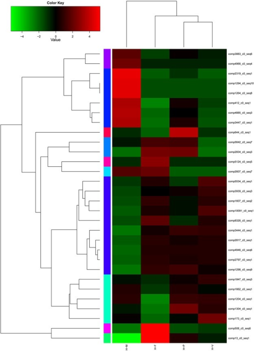 Differentially expressed genes (DEGs) between the four developmental stages in H. marmoreus.Each column represents an experimental sample (e.g., H-M, H-V, H-P and H-F), and each row represent a gene. Expression differences are shown in different colors. Red indicates high expression and green indicates low expression.