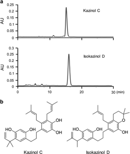 High-performance liquid chromatography (a) and chemical structures (b) of kazinol C and isokazinol D.