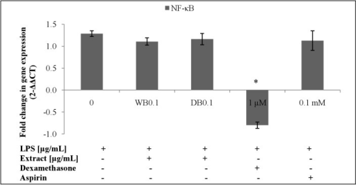 Effects of A. rugosum extracts on NF-κB p65 gene expression (S1 Dataset).RAW264.7 cells were co-incubated with A. rugosum extracts (WB0.1: 0.1 μg/mL WB; DB0.1: 0.1 μg/mL DB) and 1 μg/mL LPS for 24 hrs. Dexamethasone (1 μM) and aspirin (0.1 mM) served as positive controls. β-actin was used as loading control and normalised against the treated group. Results shown represent the mean ± SD, n = 3 and *p < 0.05 versus LPS-induced NO level alone.