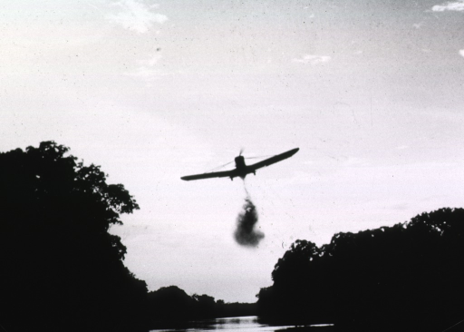 <p>An airplane is flying low over a river which is heavily wooded on both sides; a cloud of insecticide descends from the plane.</p>
