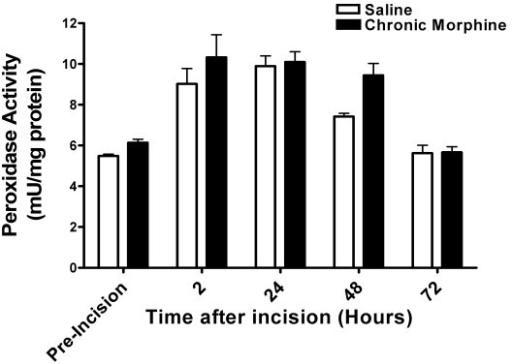 Myeloperoxidase (MPO) activity after hind paw incisions. For these experiments MPO activity was measured in peri-incisional skin as an index of infiltrating neutrophil activity. Skin was harvested from separate groups of mice at the indicated time points and processed for MPO assays as described in Methods. The time course for analysis was the same as that used for the behavioral and cytokine assays. Statistical analysis failed to detect between group differences at any of these time points. N = 8/group.