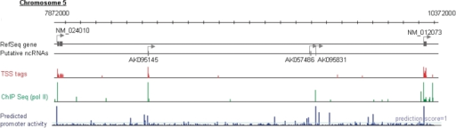 Predicted potential promoter activity landscape of the human genome. Example of an intergenic region with the indicated TSS tag count (red bars), pol II binding signal (green bars) and prediction score (blue bars). The description of this graph is as in Figure 4B and C.