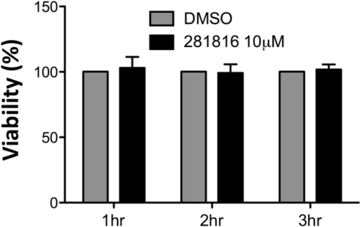 Viability of Huh-7 cells treated with 281816 in the HCV entry experiments.An MTS assay [38] was used to determine the viability of cells treated with 10 µM 281816 in DMSO (and DMSO alone, as a control) for 1 hr, 2 hr, or 3 hr under the same conditions used in the HCV entry experiments. 281816 is not toxic under any of the conditions used in this assay. There were no significant differences between the 281816 treated and control samples (p values <0.05).